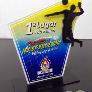 Troféu em acrílico com adesivo impresso